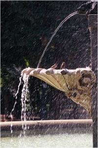 KC fountains 5